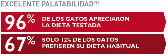 alimentacion_gato_alergia.PNG